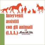 INTERVENTI ASSISTITI CON GLI ANIMALI: due proposte formative riservate ai Medici Veterinari